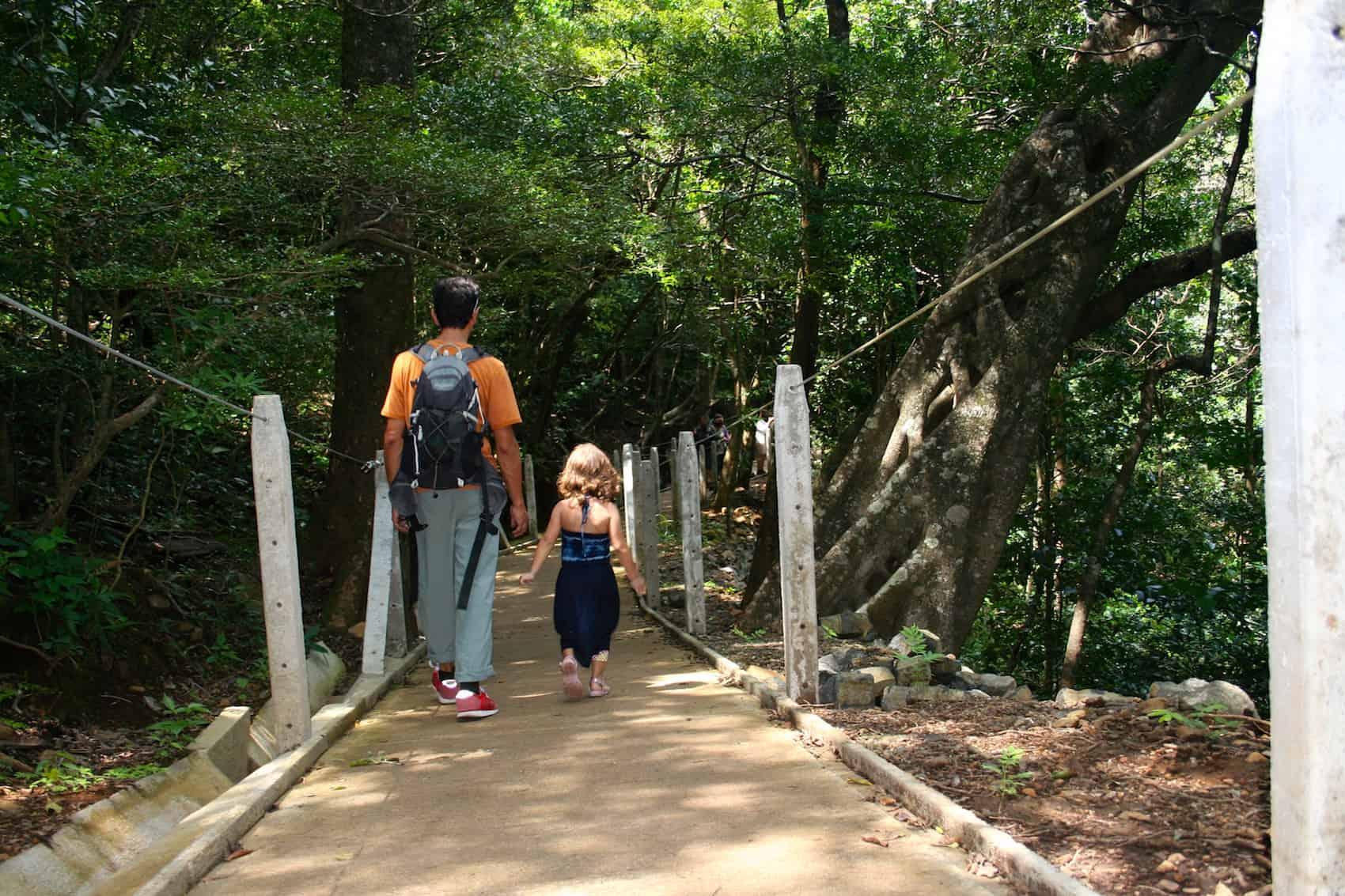 Rincón de la Vieja trail