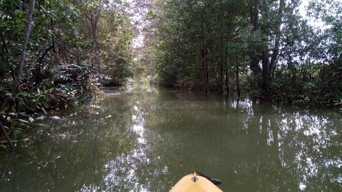 Yellow kayak, green river.