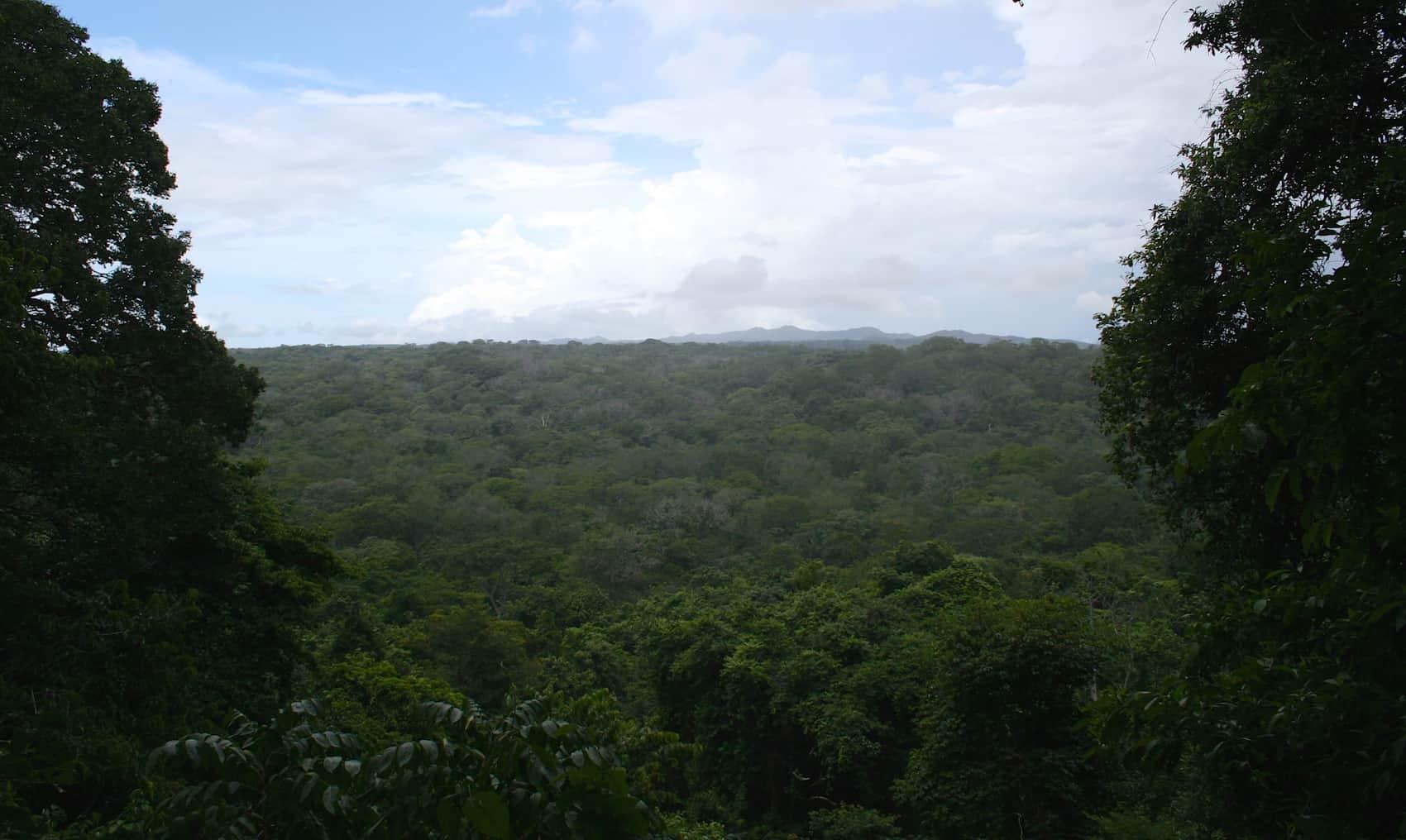tropical dry forest Santa Rosa National Park