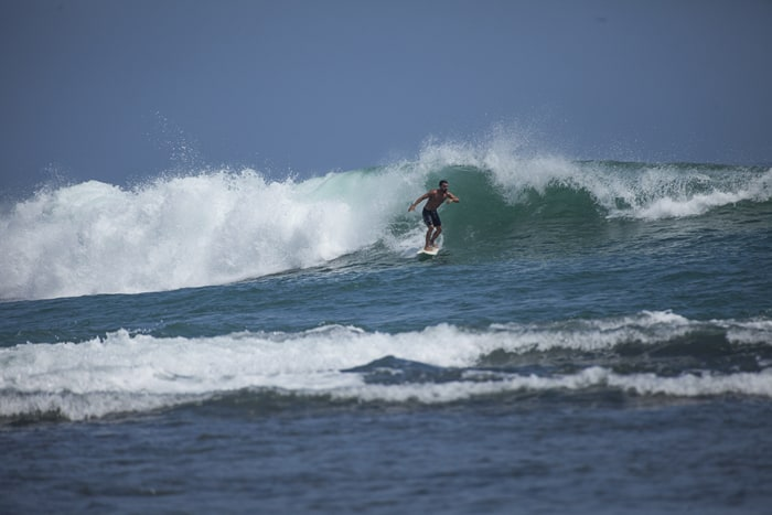 A surfer catches a wave in Puerto Viejo.