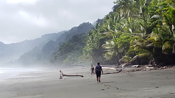 A three-kilometer beach hike separates La Leona Lodge (and adjacent Corcovado ranger station) from Carate.