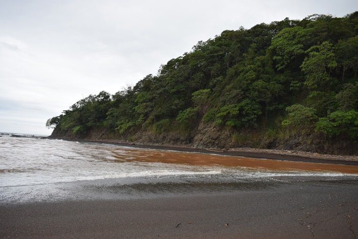 The ocean at the mouth of the Río Ora is brown from runoff from recent rains.