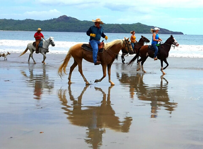 Horseback riding on the beach: What's not to like?