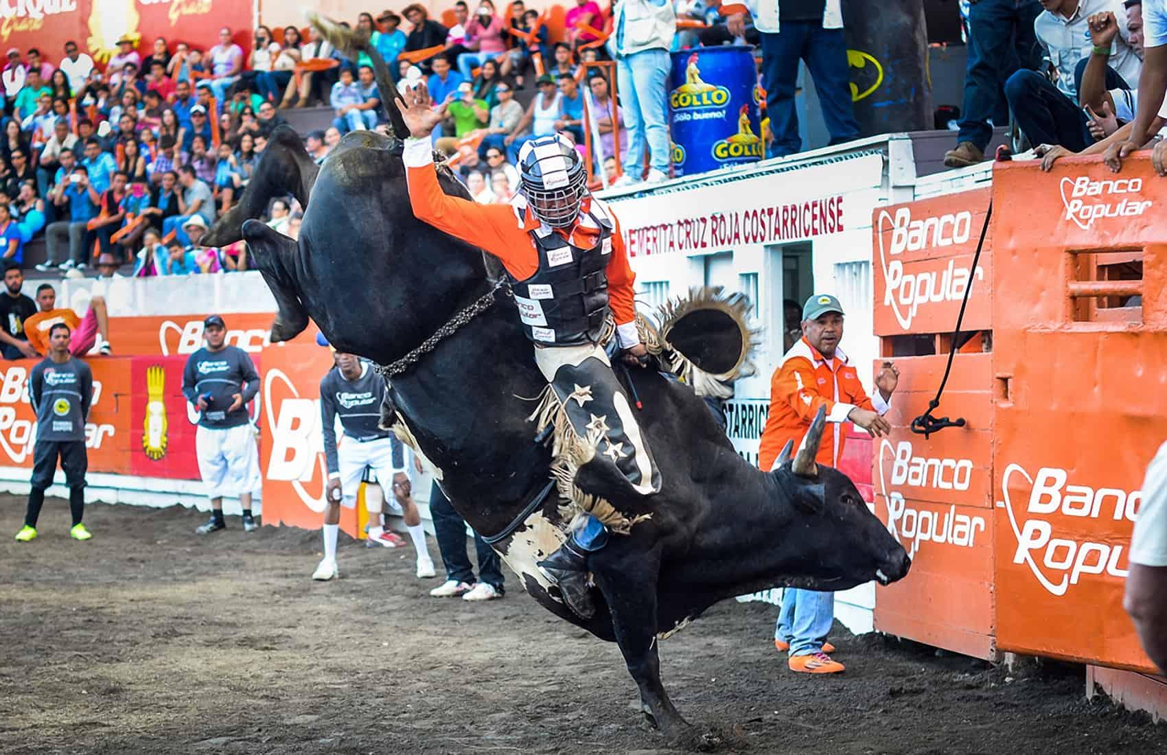 Tico-style bullfights