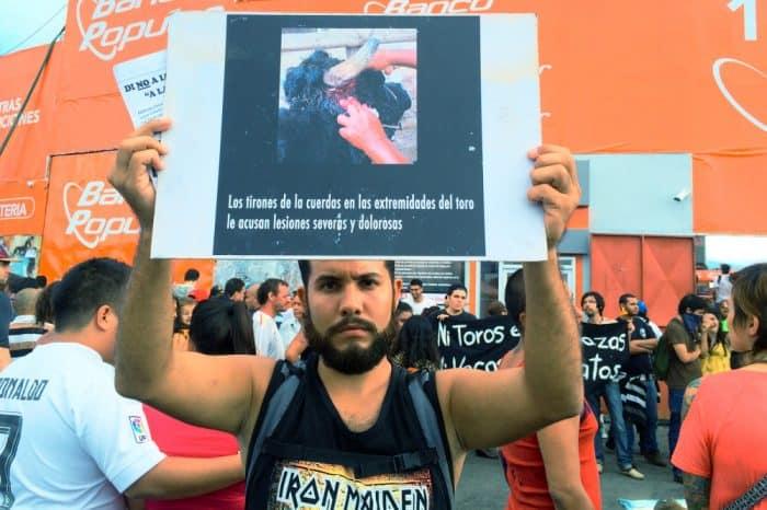 Demonstration against bullfights in Zapote. Dec. 28, 2015.
