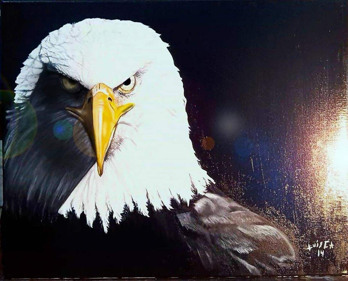 Luis Campos' painting of a bald eagle