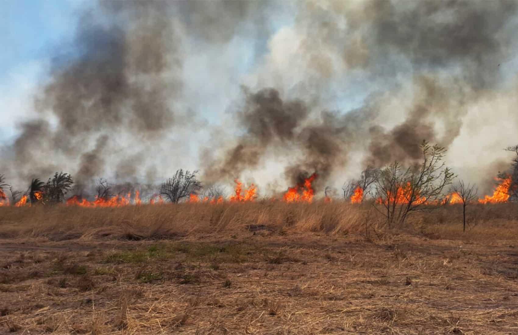 Wildfire season 2017