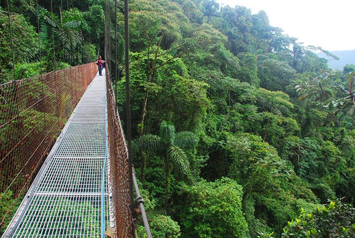 Hanging bridge at Mistico.