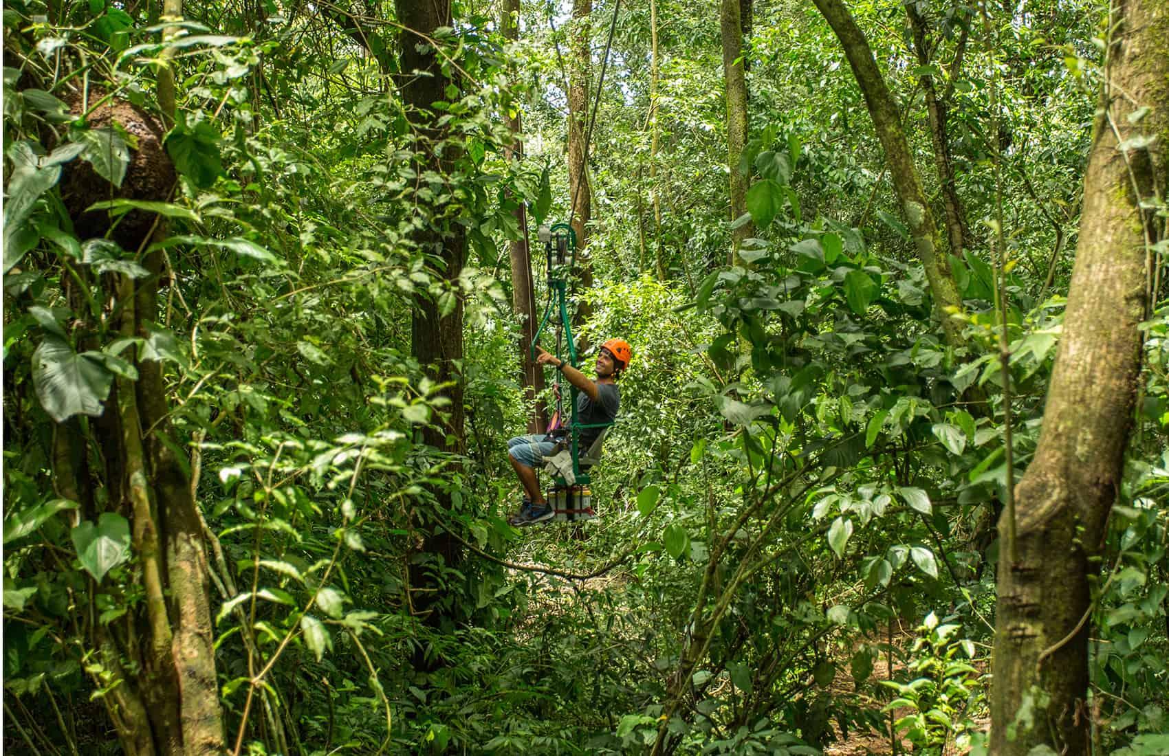 Ziplining, canopy