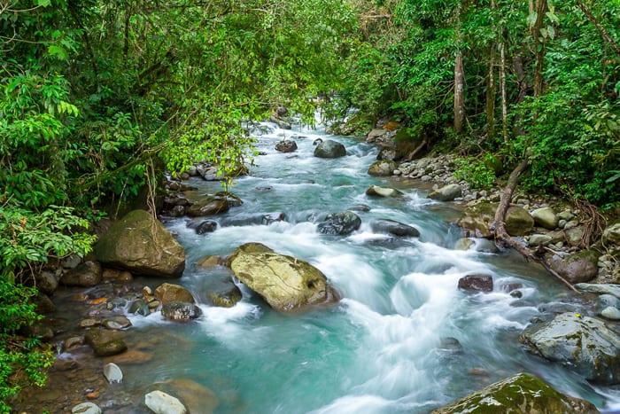 Cold mountain river on the slopes of El Valle de El General, Pérez Zeledón.