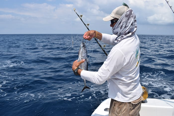 Jesús unhooks a perfect bait fish.