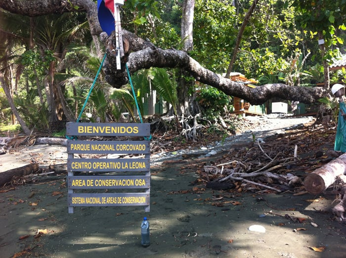 Welcome to Corcovado National Park.