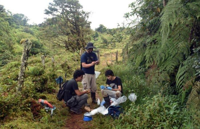 Costa Rican researchers Gilbert Alvarado y Randall Jiménez. September 2016.