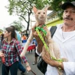 President Luis Guillermo Solís signs Animal Welfare Bill into law. June 11, 2017