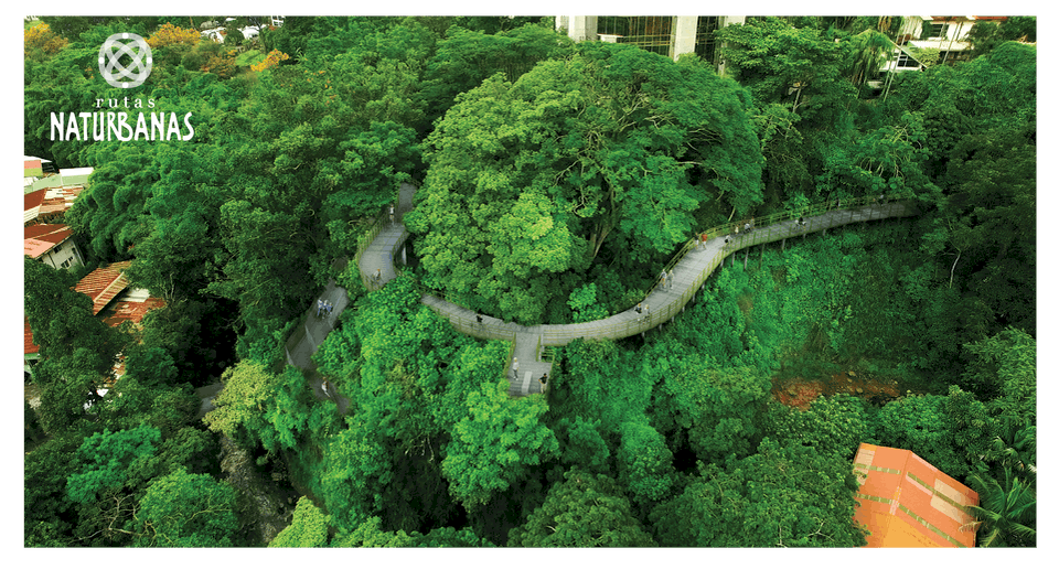 Rutas Naturbanas will be developing an ecological urban pathway through San José to create a more sustainable city that enjoys its rivers and nature.