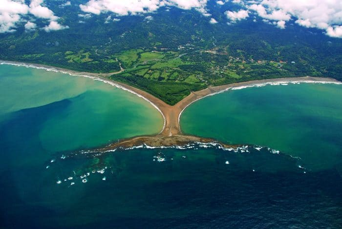 Marino Ballena National Park reopens to the public