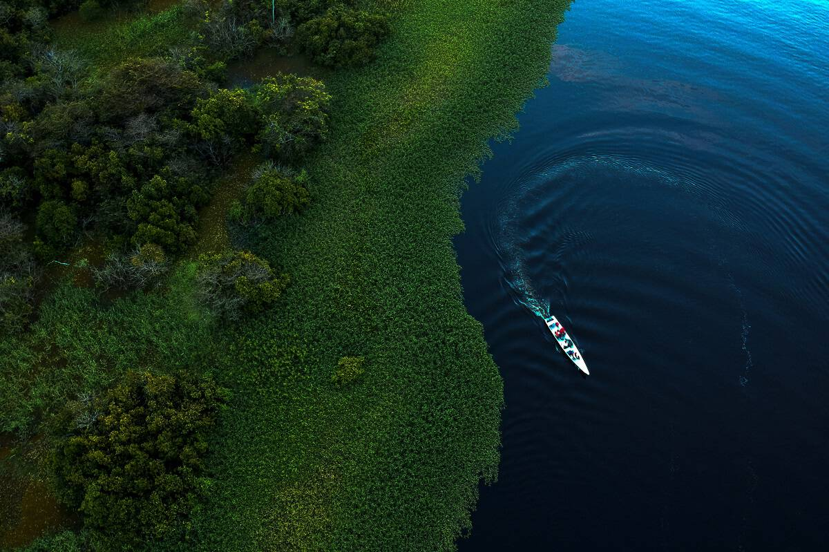 Amazonas state, Brazil, environmental work