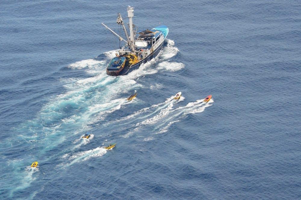 Tuna fishing off the coast of Costa Rica.