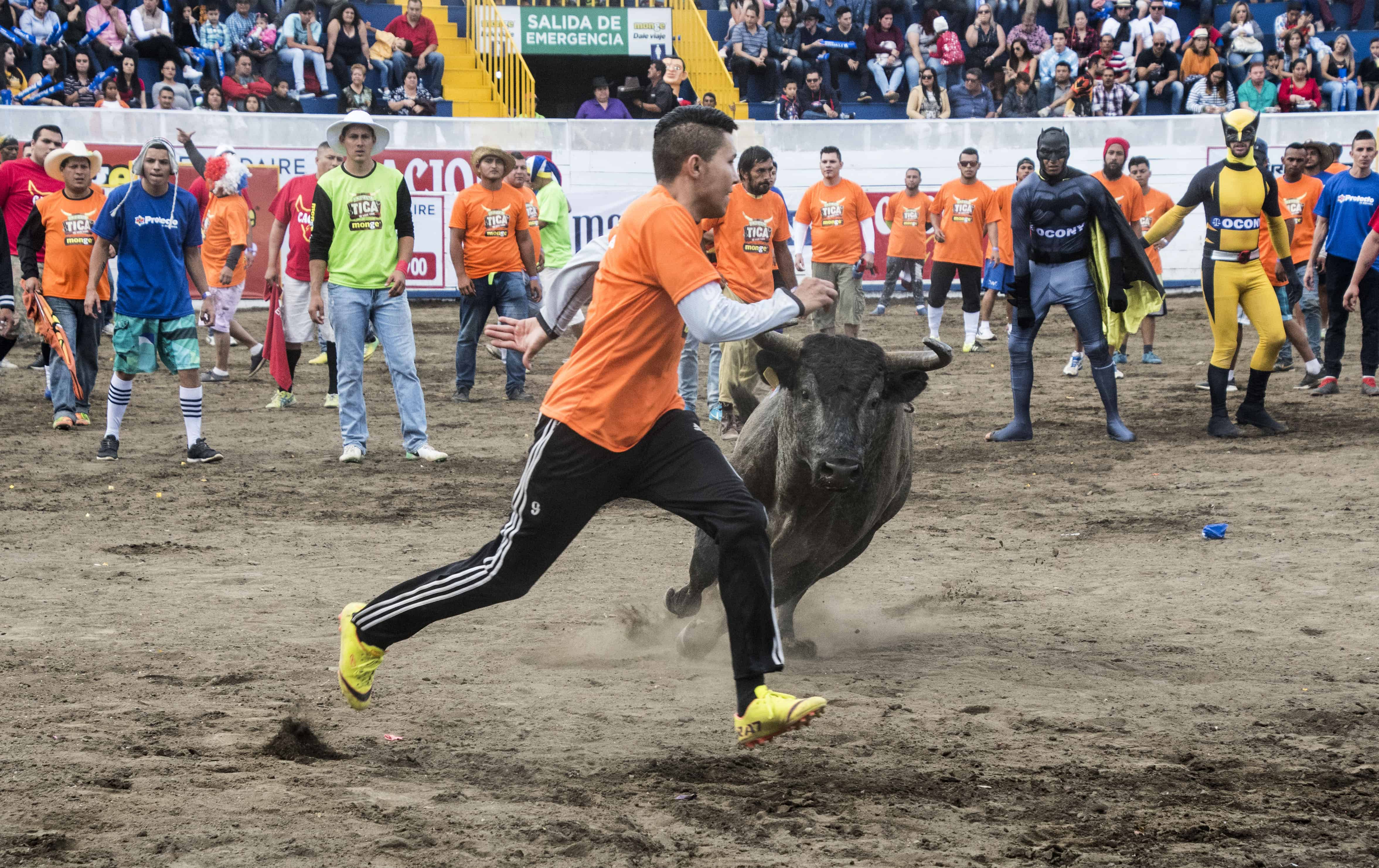Fiestas de Zapote 2018-19