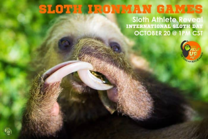 The 2019 Sloth Ironman Games