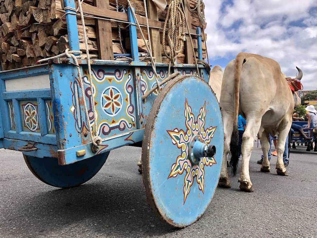 2019 National Oxcart Parade