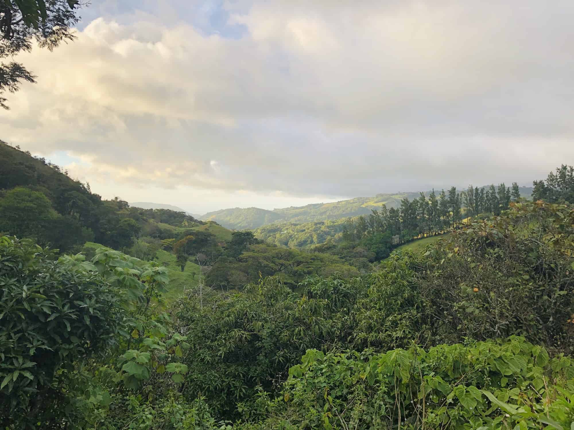 Panorama from Monteverde
