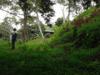 costa-rica-cangrejal-scenery-mv-13-1-1