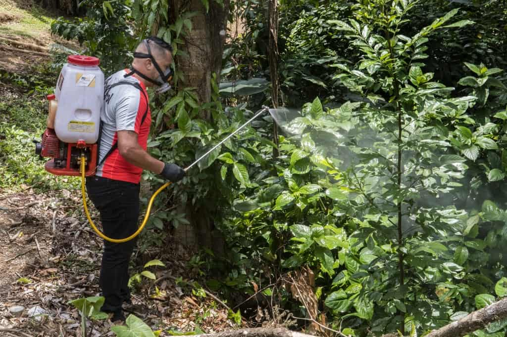 Fumigation against dengue in Costa Rica