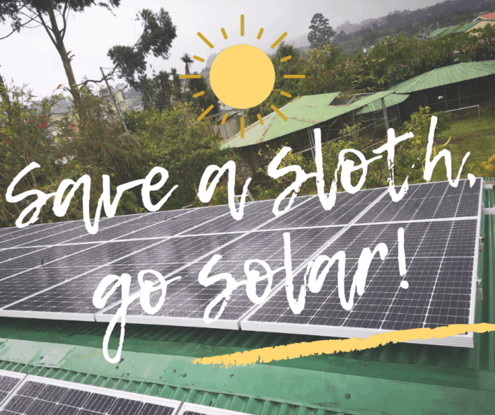 Save a sloth, go solar!