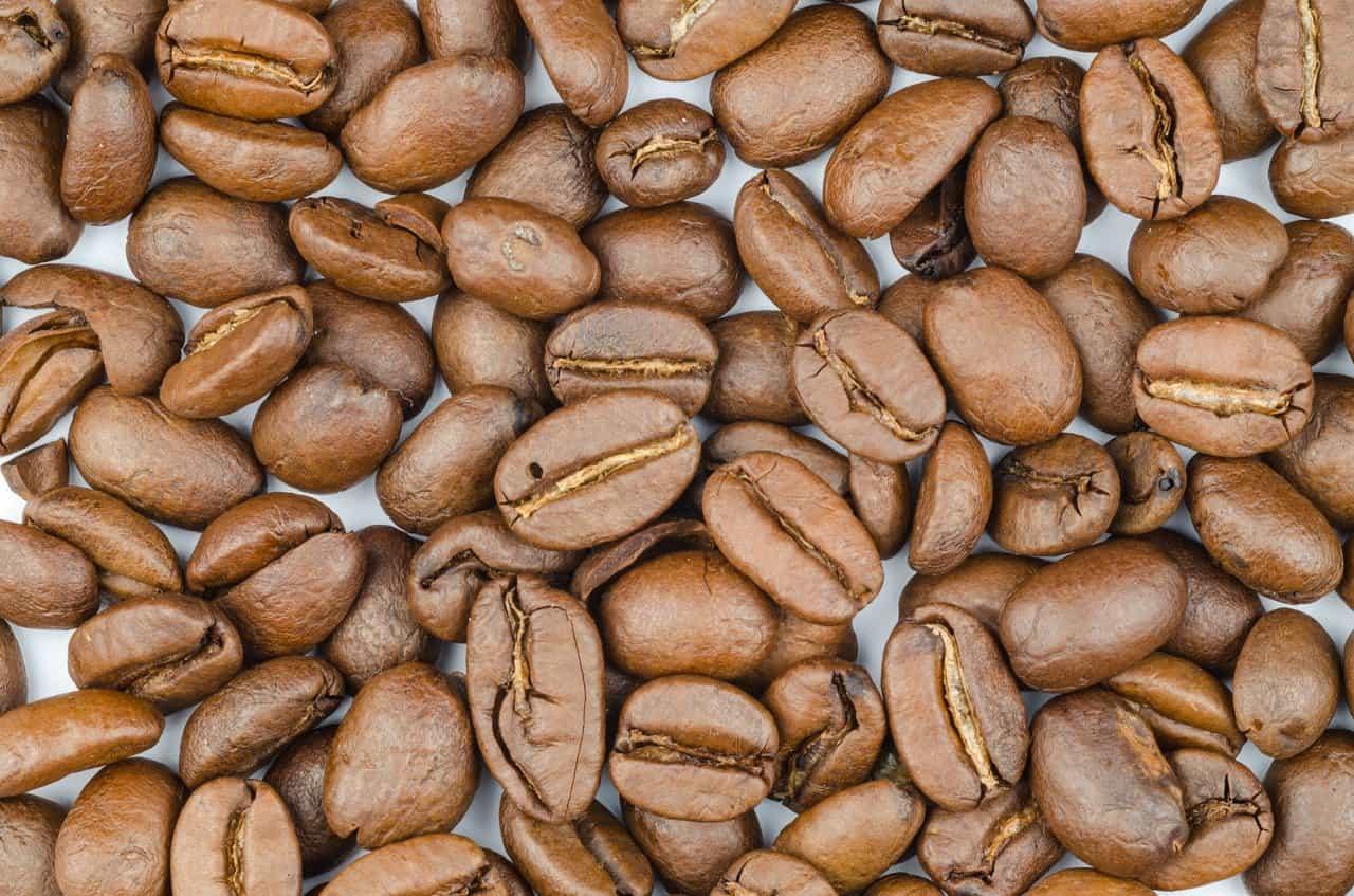 Fresh Roasted Costa Rica Coffee