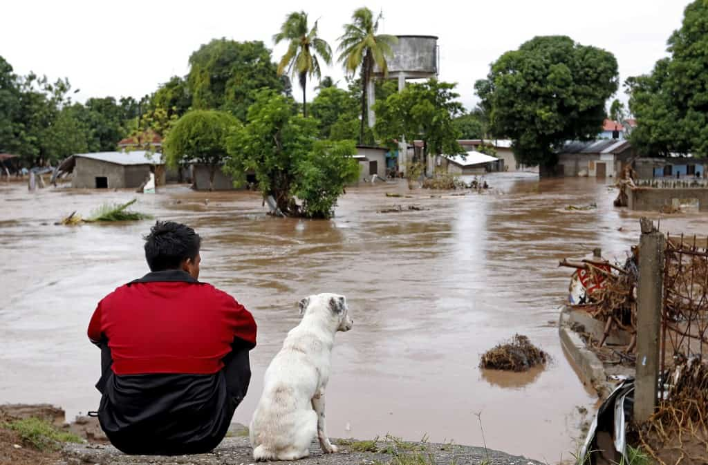 A man and his dog look at a flooded area in El Progreso, in the Honduran department of Yoro, on November 18, 2020 after the passage of Hurricane Iota.