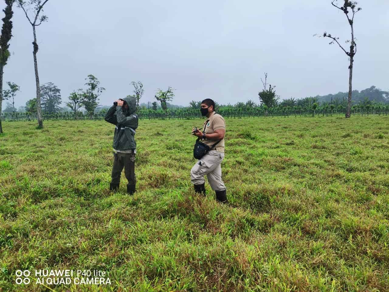 SINAC officials search for a lion in Costa Rica