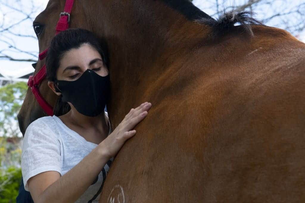 equine therapy at the Costa Rican Mounted Police in San Jose